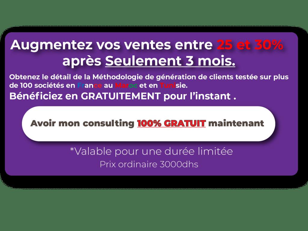 consulting gratuit publicité en ligne